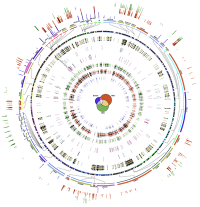 Circos - Circular Genome Data Visualization (400 x 414)