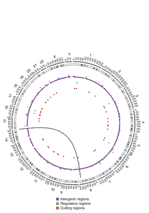 Circular genome visualization and data visualization with Circos: The genetic landscape of mutations in Burkitt lymphoma (300 x 427)
