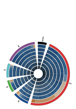 Circular genome visualization and data visualization with Circos: Identification of activated cytokine pathways in the blood of systemic lupus erythematosus, myositis, rheumatoid arthritis, and scleroderma patients (300 x 427)