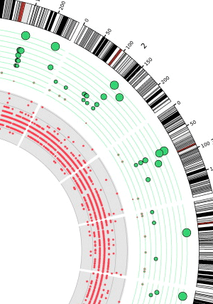 Circular genome visualization and data visualization with Circos: Sequencing and annotated analysis of an Estonian human genome (300 x 427)