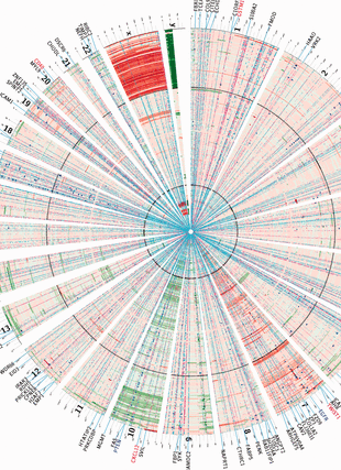 Circular genome visualization and data visualization with Circos: An integrative characterization of recurrent molecular aberrations in glioblastoma genomes (310 x 427)