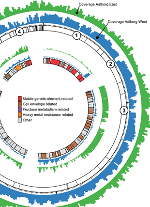 Circular genome visualization and data visualization with Circos: Metabolic model for the filamentous