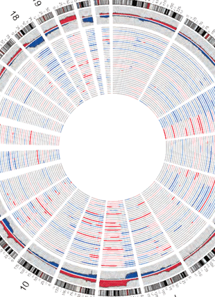 Circular genome visualization and data visualization with Circos: Integrative genomic characterization of oral squamous cell carcinoma identifies frequent somatic drivers (310 x 427)