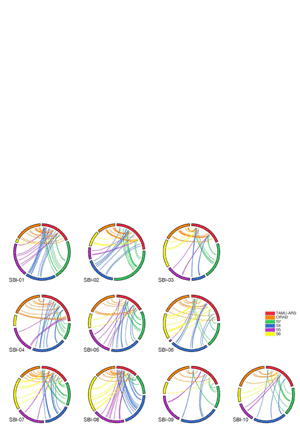 Circular genome visualization and data visualization with Circos: A consensus genetic map of sorghum that integrates multiple component maps and high-throughput Diversity Array Technology (DArT) markers (300 x 427)