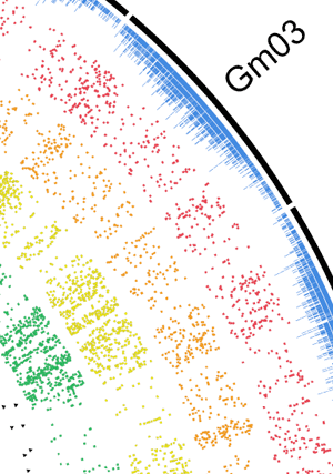 Circular genome visualization and data visualization with Circos: Rapid Genotyping of Soybean Cultivars Using High Throughput Sequencing (300 x 427)