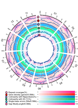 Circular genome visualization and data visualization with Circos: Dissecting yield-associated loci in super hybrid rice by resequencing recombinant inbred lines and improving parental genome sequences (310 x 427)