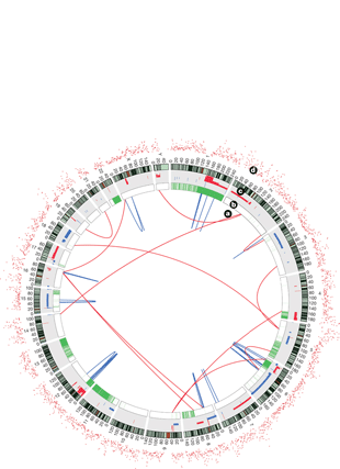 Circular genome visualization and data visualization with Circos: The mutation spectrum revealed by paired genome sequences from a lung cancer patient (310 x 427)