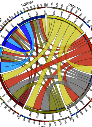 Circular genome visualization and data visualization with Circos: Mutualistic Co-evolution of Type III Effector Genes in Sinorhizobium fredii and Bradyrhizobium japonicum (310 x 427)