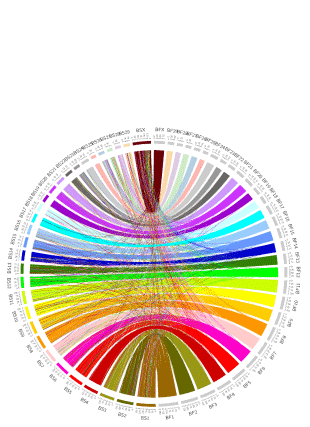 Circular genome visualization and data visualization with Circos: Acceleration of X-chromosome gene order evolution in the cattle lineage (310 x 427)